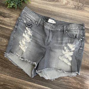 TORRID Grey Distressed Cut Off Shorts Denim 22